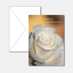 Trauerkarte weisse Rose F