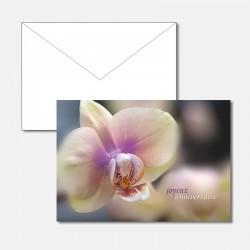 Geburtstagskarte Orchidee F