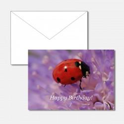 Geburtstagskarte...