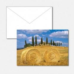 Heu Toscana