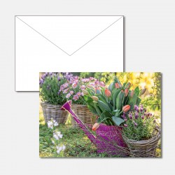Tulpen in der Giesskanne