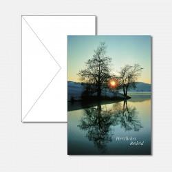 Baumspiegelung im See