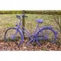 Lila Fahrrad im Herbst