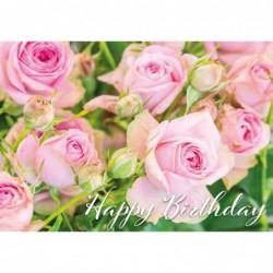 Rosa Röschen - Happy Birthday